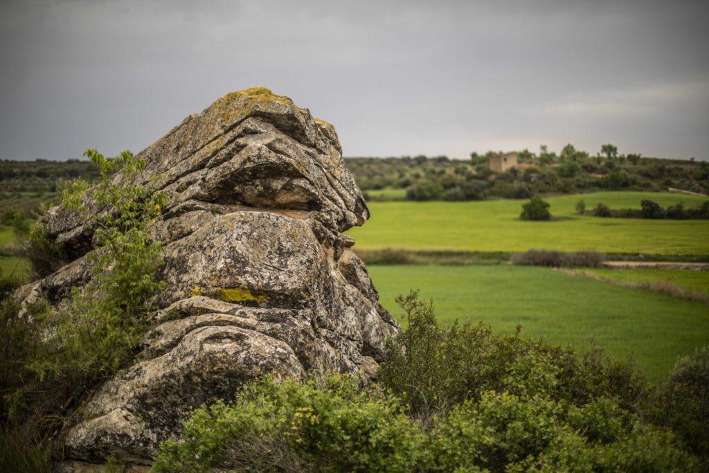 pedra seca arbeca les garrigues